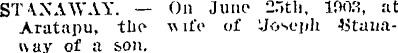 Joseph Patrick Stanaway 1872 - 1937 (3/6)