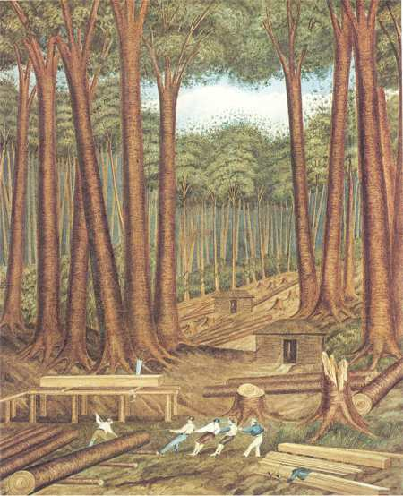 Charles heaphy sawers
