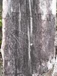 Headstone - Tokatoka Cemetery.