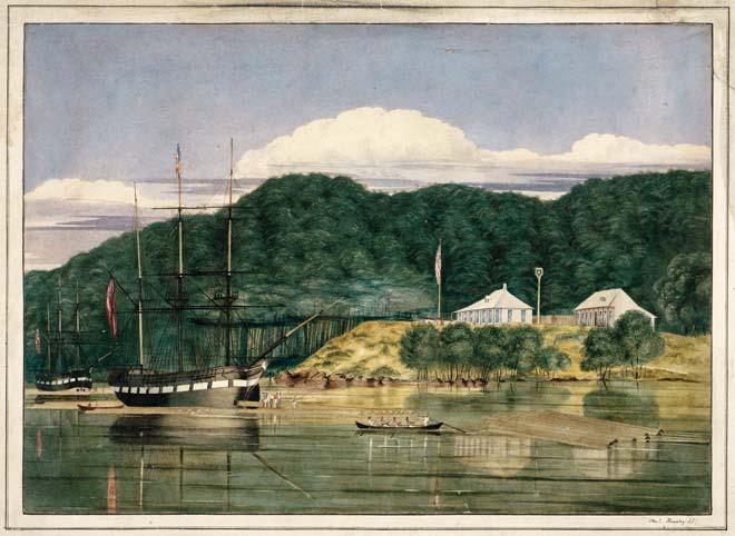Kauri Spars Kohukohu Hokianga 1839