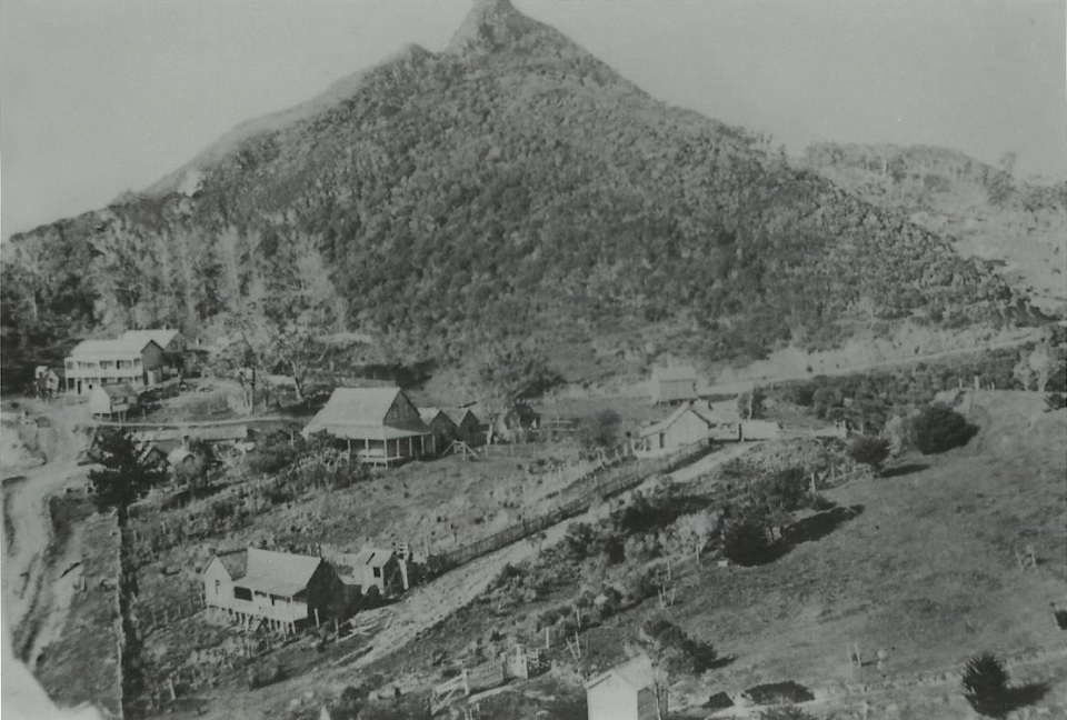 Tokatoka c1896 - Kauri Museum