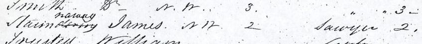 Trimed Clendon Census 1846 - Hokianga James Stanaway